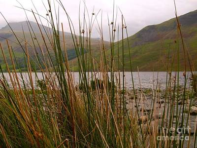 Photograph - Wastwater Through The Reeds by Joan-Violet Stretch
