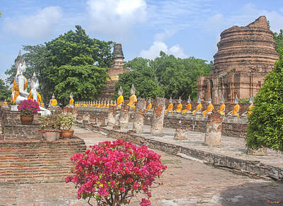Photograph - Wat Phra Chao Phya-thai Buddha Images And Ruined Chedi Dtha004 by Gerry Gantt
