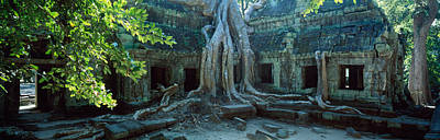 Tree Roots Photograph - Wat Temple Complex Of Ta-prohm Cambodia by Panoramic Images