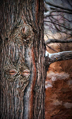 Photograph - Watcher In The Woods - Tree With Knothole Eyes - Pareidolia  by Nikolyn McDonald