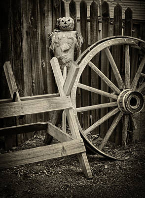 Rag Doll Photograph - Watchful by Camille Lopez