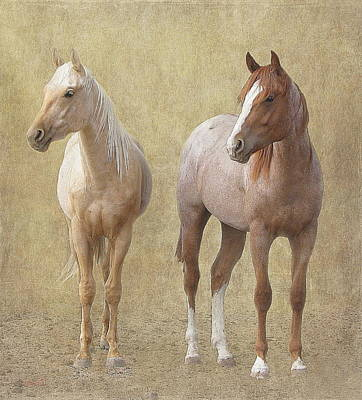 Watchful Horses Art Print by Angie Vogel