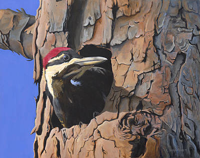 Watchful Woodpecker Art Print by Kirsten Wahlquist