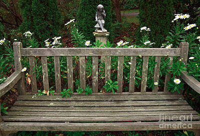 Photograph - Watching Over The Bench by John Rizzuto