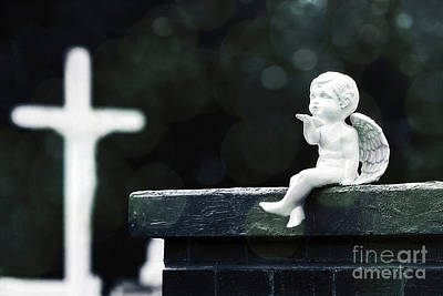 Ledge Photograph - Watching Over Them by Trish Mistric