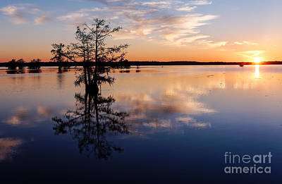 Watching The Sunset At Ba Steinhagen Lake Martin Dies Jr. State Park - Jasper East Texas Art Print by Silvio Ligutti