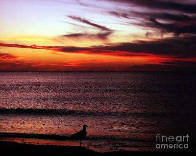 Watching The Sunset Art Print by Doris Wood