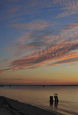 Photograph - Watching The Sunset by Terry DeLuco