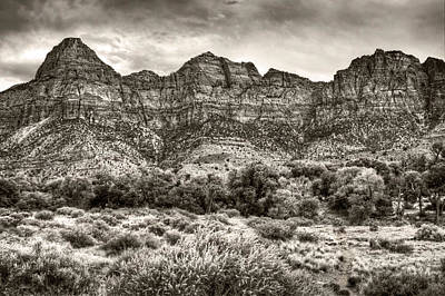 Photograph - Watchman Trail In Sepia - Zion by Tammy Wetzel