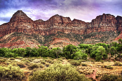 Photograph - Watchman Trail - Zion by Tammy Wetzel