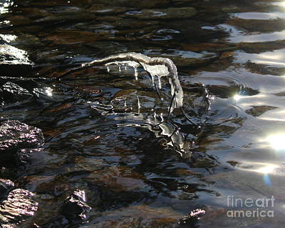 Photograph - Water And Ice by Leone Lund