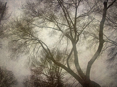 Water And Mist Caresses Art Print