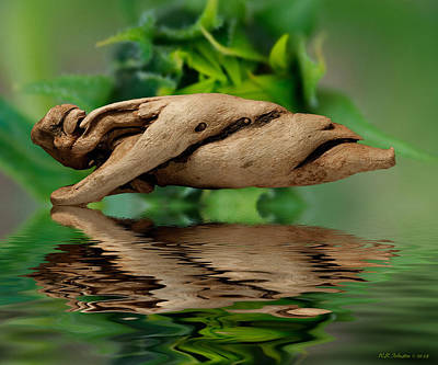 Photograph - Water Balance by WB Johnston