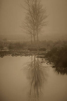 Photograph - Water Buffalo Morning Fog by Frank Feliciano