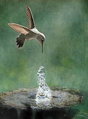 Water Dance Art Print by Angie Vogel