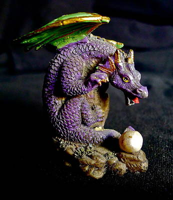 Photograph - Water Dragon by Denise Mazzocco