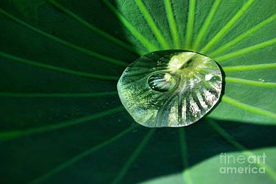 Photograph - Water Drop by John S