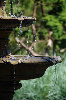 Photograph - Water Droplets by Marilyn Wilson