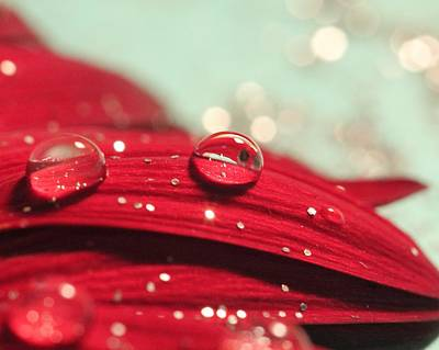 Photograph - Water Drops And Glitter by Angela Murdock