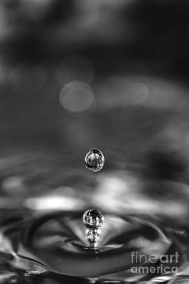 Photograph - Water Drops Rebound by Paul Cowan