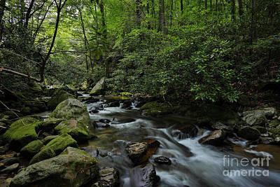 Photograph - Water Falls And Rocks by Mina Isaac