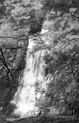 Water Falls Art Print by Paul Cammarata