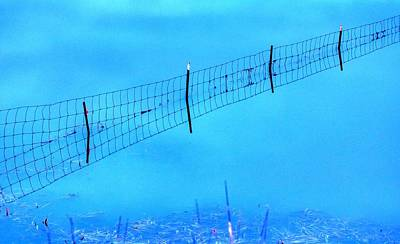 World War 2 Action Photography - Water Fence 20779 by Jerry Sodorff