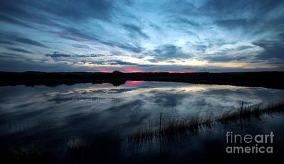 Buckaroo Photograph - Water Field Harney County Oregon by Michele AnneLouise Cohen