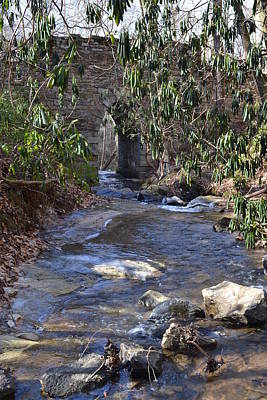 Photograph - Water Flow To Poinsett by Jeff  Bjune