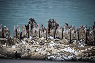 Photograph - Water Front by Ronald Grogan