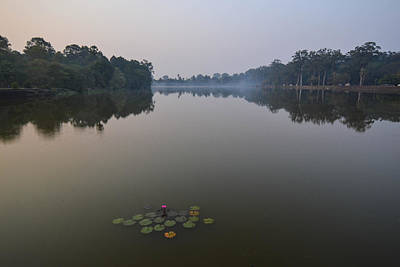 Photograph - Water Lilies At Dawn by Bill Mock