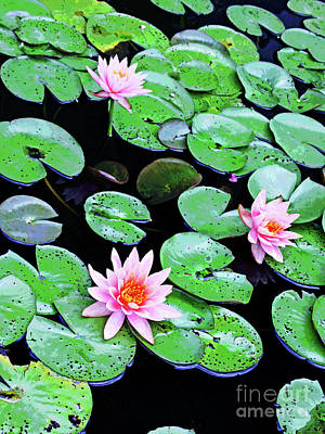 Water Lillies -- Inspired By Monet-2 Art Print