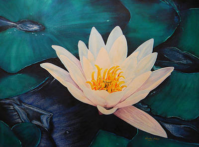 Water Lily Art Print by Adel Nemeth