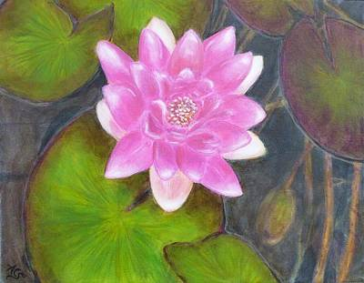 Painting - Water Lily by Amelie Simmons