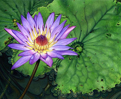 Painting - Water Lily At The Conservatory Of Flowers by Suzannah Alexander