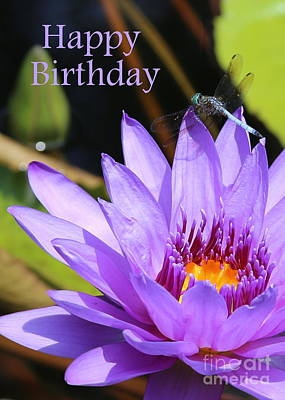 Water Lily Birthday Card Art Print by Carol Groenen