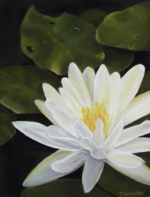 Pastel - Water Lily by Joan Swanson
