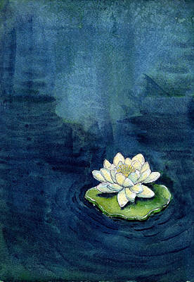 Water Lily Art Print by Katherine Miller