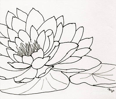 Still Life Drawings - Water Lily Line Drawing by Anita Lewis