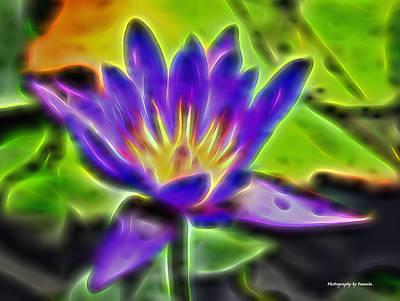 Mixed Media - Water Lily by Pamela Walton