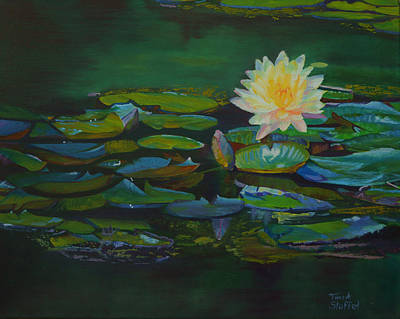 Lilly Pond Painting - Water Lily Pond by Tina Stoffel