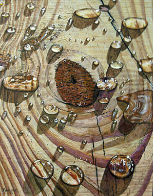 Wood Grain Drawing - Water On Wood by Ron Wilder