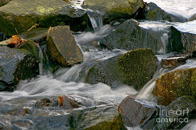 Autumn Leaf On Water Photograph - Water Over Rocks by Sharon Talson