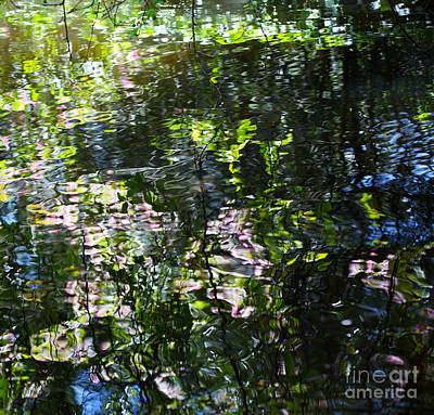 Photograph - Water Ripples On Lake by Nicholas Burningham