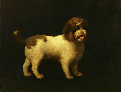 Small Size Painting - Water Spaniel Signed And Dated, Lower Right Geo Stubbs by Litz Collection