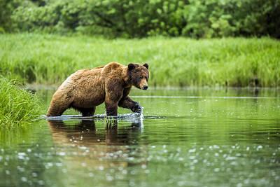 Deen Photograph - Water Walker by Christopher Martin