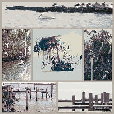Waterbirds Collection2 Art Print by Megan Dirsa-DuBois