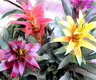 Watercolor And Ink Sketch Of Colorful Bromeliads Art Print by Elaine Plesser