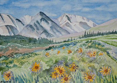 Nederland Painting - Watercolor - Colorado Alpine Sunflower Landscape by Cascade Colors