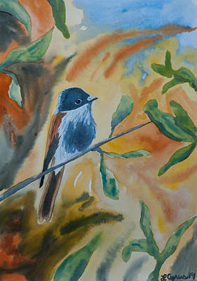 Flycatcher Painting - Watercolor - Delicate Perching Bird by Cascade Colors